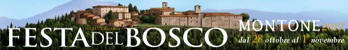 Festa del Bosco 2017