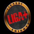 Concerto LIGAPIÙ (Tribute Luciano Ligabue)
