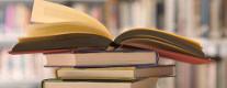Mercatino del Libro 2014