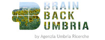 Brain Back Umbria