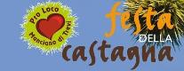 Festa della Castagna 2014