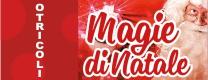 Magie di Natale 2016-2017