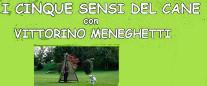 Stage - I Cinque Sensi del Cane - con Vittorino Meneghetti