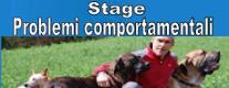 Problemi Comportamentali nel Cane: Conoscerli e Gestirli