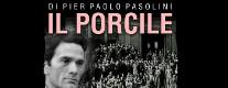 Il Porcile di Pier Paolo Pasolini