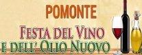 Festa del Vino e dell'Olio Nuovo 2013