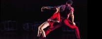 Teatro Secci - Cahier de la Dance