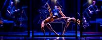 Teatro Mancinelli - Odyssey Ballet