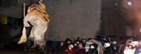 Festa della Vecchiarella 2015
