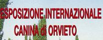 OrvietoExpo Cinofilia 2018