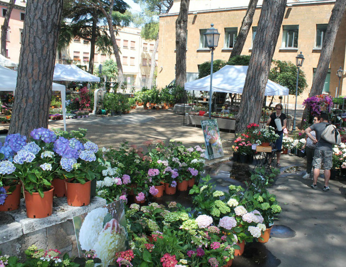 Orvieto in Fiore - Mostra Mercato Florovivaistica