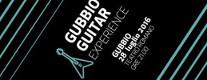 Gubbio Guitar Experience 2016 per TELETHON