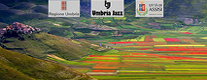 Umbria Jazz per il Terremoto in Centro Italia