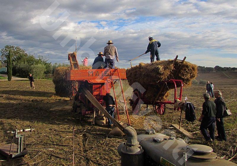 Mostra Carro Agricolo