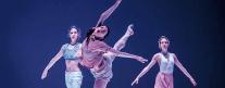 Teatro Secci - Balletto di Roma - Paradox