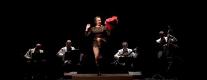 Teatro Mengoni - L'Allegra Vedova
