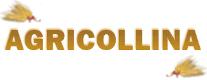 Agricollina - Mostra Mercato Macchine Agricole e Zootecnia 2018