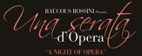 Una Serata D'Opera
