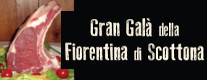 Gran Galà della Fiorentina di Scottona