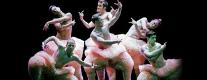 Teatro Morlacchi - Chicos Mambo in Tutu