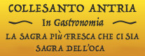 Collesanto Antria in Gastronomia - Sagra dell' Oca 2018