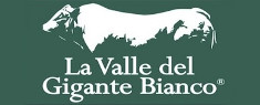 La Valle del Gigante Bianco 2020