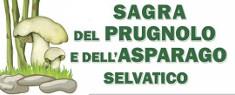 Sagra del Prugnolo e dell'Asparago Selvatico 2019