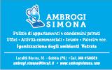Impresa di Pulizie Ambrogi Simona