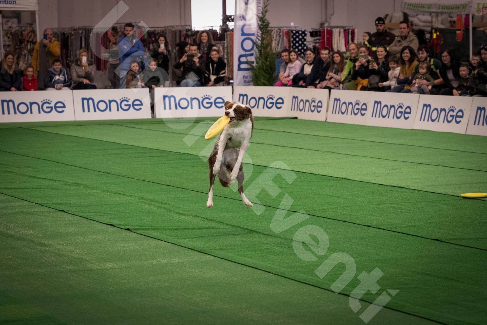 Esotika Pet Show Italia - Arezzo
