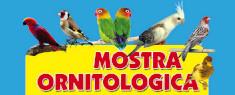 Mostra Ornitologica 2019