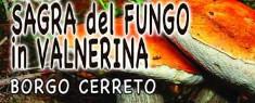 Sagra del Fungo in Valnerina 2020