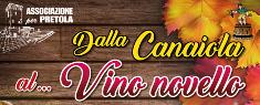 Dalla Canaiola al Vino Novello