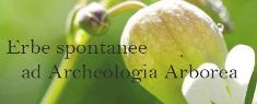 Passeggiata Erboristica - Erbe Spontanee ad Archeologia Erborea