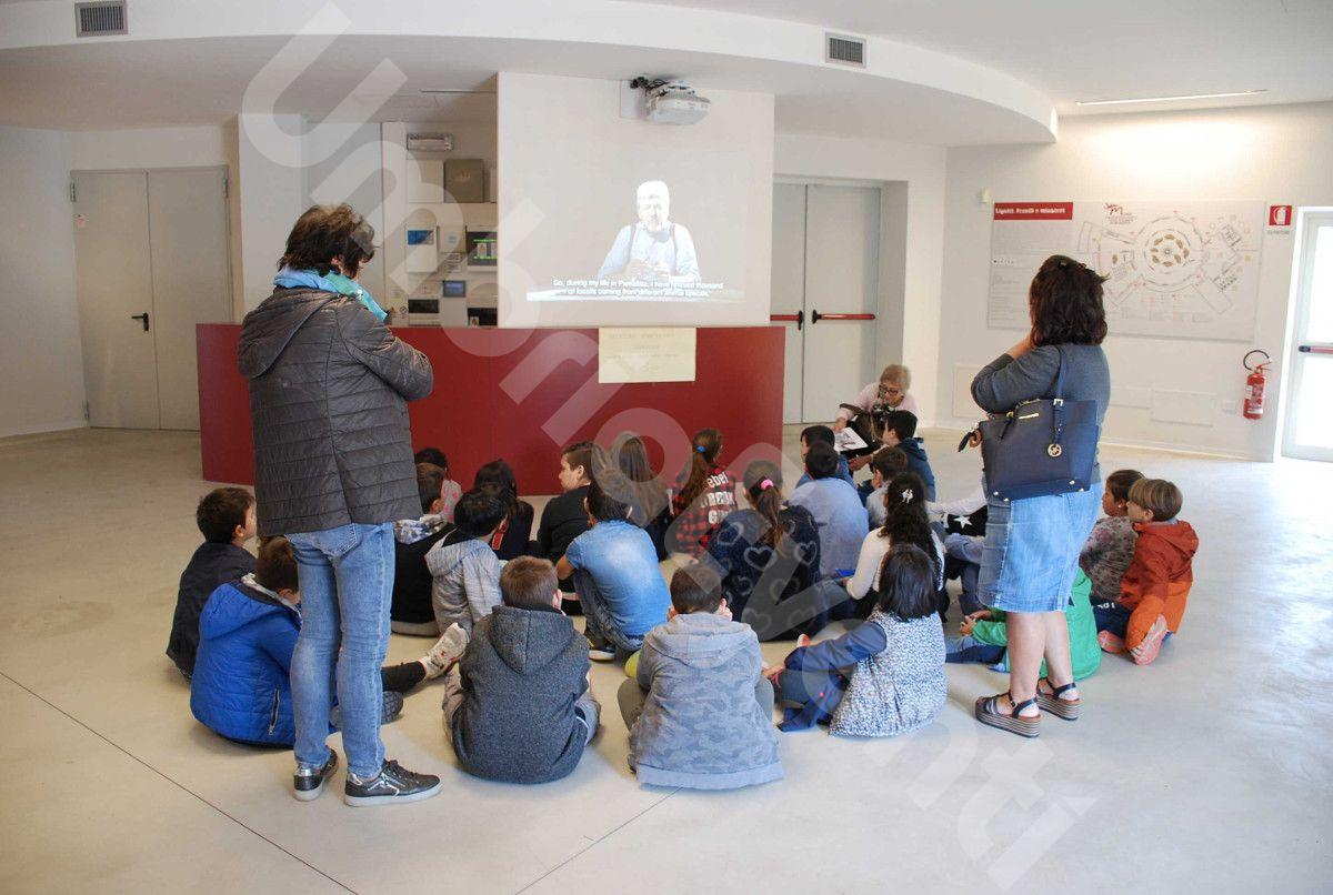 Museo Paleontologico - Pietrafitta