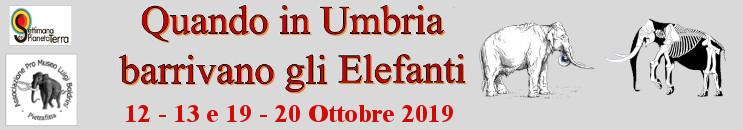 Quando in Umbria Barrivano gli Elefanti