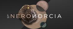 Nero Norcia 2020