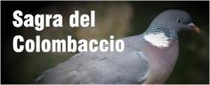 Sagra del Colombaccio