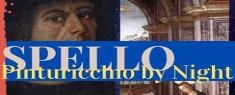 Pinturicchio by Night