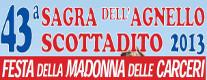 Festa della Madonna delle Carceri 2013