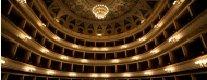 Management dello Spettacolo e Organizzazione Teatrale