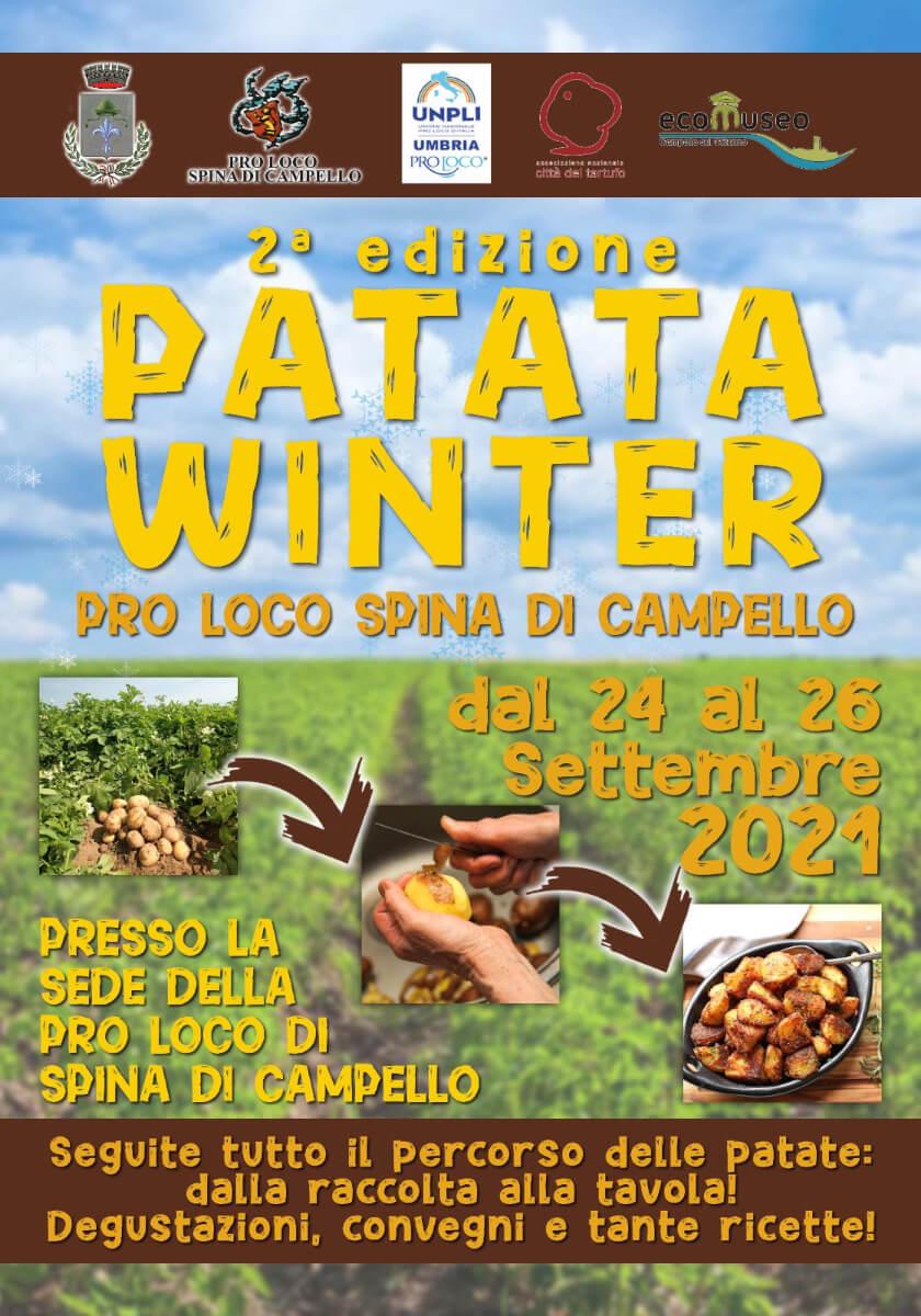 Patata Winter