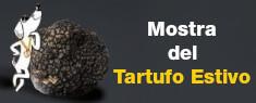 Mostra Mercato del Tartufo Estivo