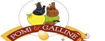 Pomi e Galline
