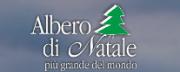 Albero di Natale di Gubbio 2018