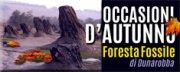 Occasioni d'Autunno alla Foresta Fossile
