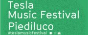 Tesla Music Festival 2018