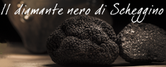 Diamante Nero di Scheggino 2018