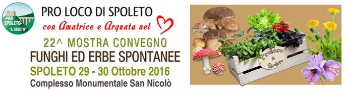 Mostra Convegno Funghi ed Erbe Spontanee 2016