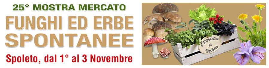 Mostra Convegno Funghi ed Erbe Spontanee 2018